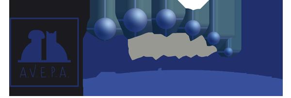 Logo_AVEPA_Elearning