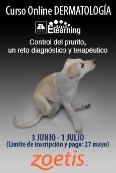 anuncio_lateralCursoPrurito