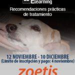 Banner_tienda_curso_Linfoma_canino